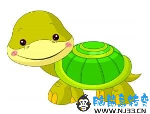 骄傲的小乌龟