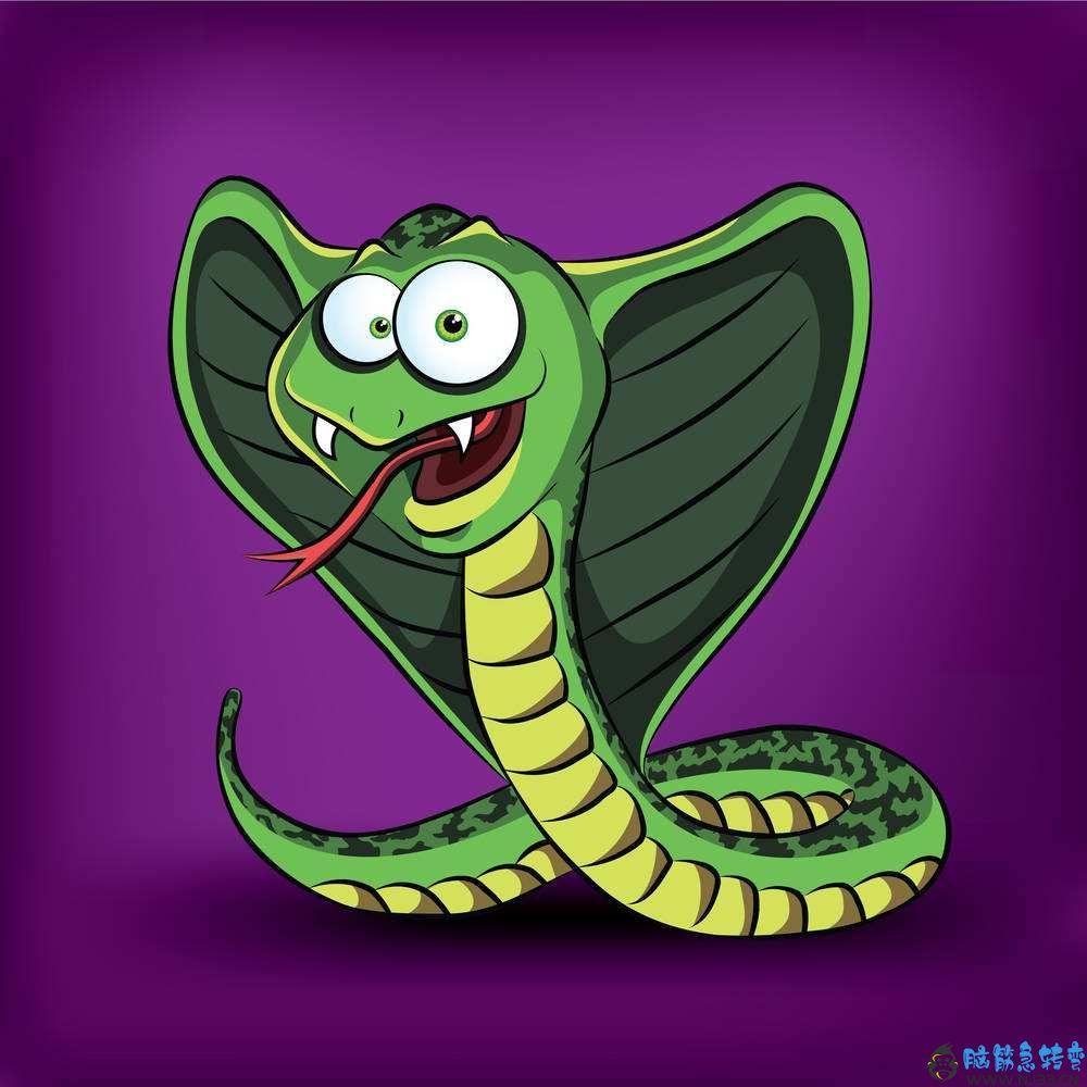 森林里有一条眼镜蛇,可是它从来不咬人,这是为什么呢?